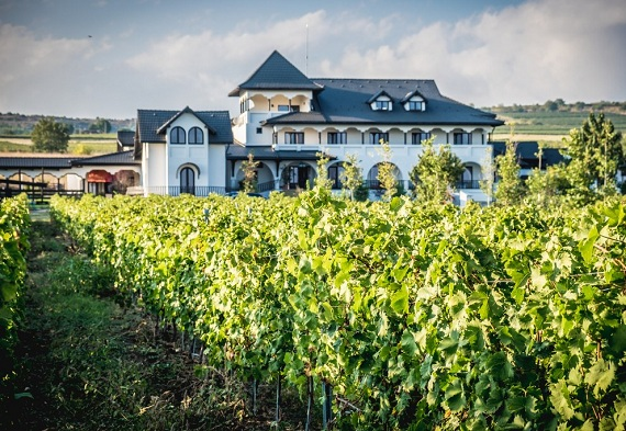 """Evadare de toamnă: """"Vizită cu degustarea a 5 vinuri la Conacul din..."""
