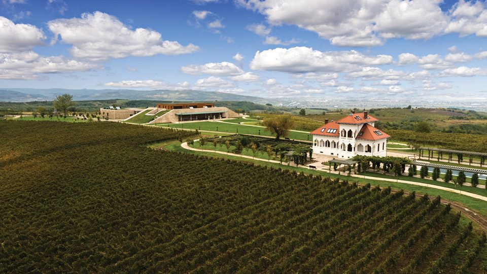 Excursie cu degustare de vinuri premium la crama Avincis și tur al...