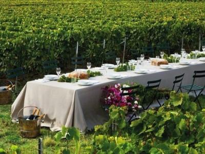 Excursie la cramele din Dealu Mare, degustări de vinuri premium, variantele cu 1-3 nopți de cazare și două ospețe pe zi + (opțional) petrecere cu taraf local. Pentru min. 4 persoane.