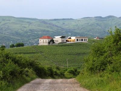 """Turul cramei și al viei + degustarea a 6 vinuri premium Lacerta + gustare de sprijin + (opțional) 1 sau 2 nopți de cazare, cină, mic dejun, piscină + plimbare cu trăsura.""""Te invită Buzăul!"""""""
