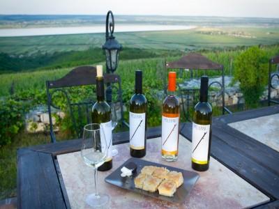 Terapie cu natură și vin la Drăgășani: vizită la Muzeul Vinului, degustare 5 vinuri, turul cramei, culcuș în pensiune de lux. În varianta supremă: + 6 ore de SPA cu masaj + lecție de ceramică la Horezu + vizită la producător de țuică. Te invită Oltenia!