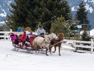 Revelion 2018 în Bucovina, pachet premium -  Petrecere și tradiții la Gura Humorului, la Hildes, 4*, plimbare cu sania, recital gourmet, dans si muzică, 4 zile cu 3 nopți, demipensiune, cine festive.