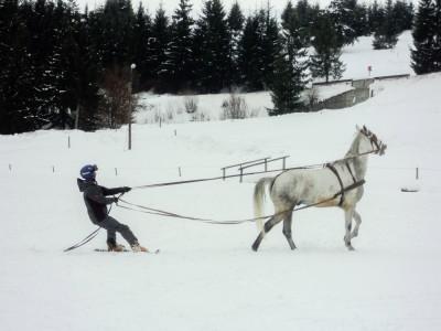 Aventuri în Munții Harghitei, la Băile Homorod: schi și săniuș, răsfăț la SPA cu masaj inclus. Gastronomie locală reinterpretată modern. Variantele de 2-4 nopți, cu mic dejun. Te invită Harghita !