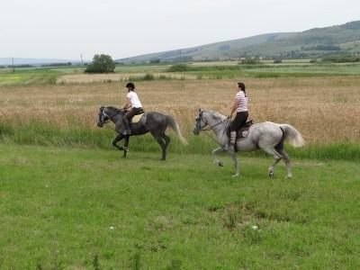 Picnic în natură și concurs de trăsuri conduse de oaspeți, lecții de călărie, plimbare cu trăsura. Variantele cu sau fără cazare. Te invită Covasna!