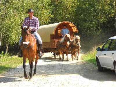 Hoinăreală prin natură cu rulota secuiască trasă de cai! În fiecare dimineață te vei trezi într-un alt sat. Variantele cu 3-5 nopți. Mic dejun inclus, vizite la meșteri si producători locali, bălăceală în băi tradiționale.