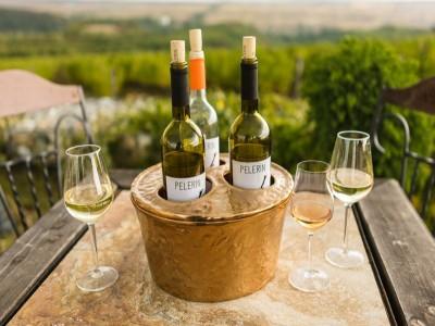 Terapie cu natură și vin la Drăgășani: turul cramei și degustarea a 5 vinuri, plimbare prin vie, culcuș în pensiune de lux, vizită la Muzeul Vinului. Variantele 2 - 3 nopți și demipensiune. Varianta cea mai iubită: 2 nopți și 3 crame!