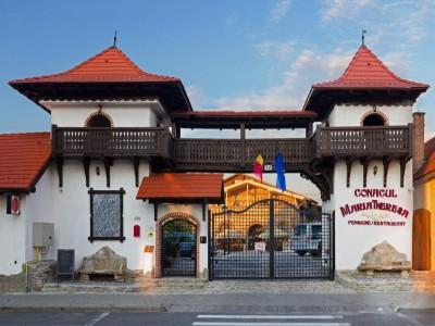 Degustă Sibiul! Plimbare cu trăsura prin cel mai mare muzeu din țară Astra Sibiu + cazare premium la Conacul Maria Theresa, 5*, Orlat, fosta garnizoană austriacă. Variantele cu 2-3 nopți si 2 mese pe zi.