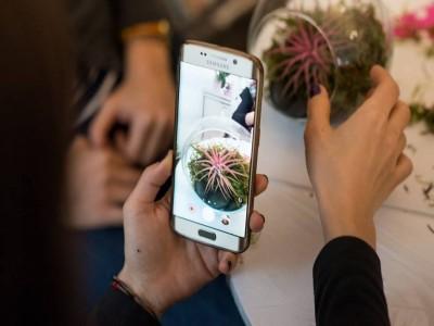 Ateliere florale interactive de toamnă - iarnă: buchet floral, bijuterii florale, terariu cu plante suculente, aranjament floral de sezon