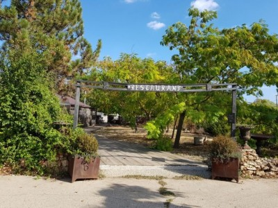Degustare de 4 vinuri și 2 mese gourmet pe zi, vizită în cramă și în pivniță la Domeniile Clos des Colombes din Constanța, camere premium cu grădină privată. Variantele cu și fără cazare.