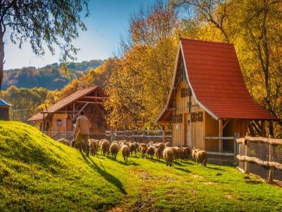 Evadare cu familia la Sighișoara: lecția de muls caprele, plimbare cu trăsura, cursuri de călărie pentru copii și părinți, lecție despre argila vie la singura fabrica de ceramică romană din țară. Cu 2-4 nopți de cazare și 2 mese pe zi.