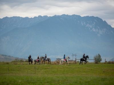 Călărie în aerul tare al munților la Pănicel - Râșnov, Brașov. Variantele cu 2-4 nopți de cazare, 2 mese pe zi și lecții de echitație pentru începători. Instructor răbdător, mereu aproape.