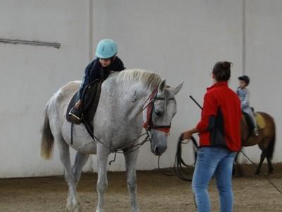 Degustă Covasna! Lecții de călărie și concurs de trăsuri trase de oaspeți + (opțional) degustări la producători locali sau ședință de observare urși și bălăceală în ape termale la Tușnad! Cu 2 - 5 nopți și 2 mese pe zi.