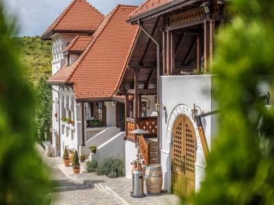 Excursie la reședința de lux Casa Timiș în podgoria Dealu Mare, Prahova, variantele cu 2 - 3 nopți, degustare de vinuri premium, cu 2 mese rafinate pe zi.