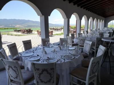 Relaxare la Domeniile Panciu - Vrancea: variantele 1-3 nopți cazare hotel 4* cu două mese rafinate pe zi + vizită ghidată în cramă și povestea despre tipicitatea soiurilor. Degustare de 5 vinuri emblematice.