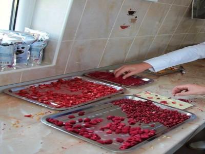 O zi în familie în Odorheiu Secuiesc - vizitează un laborator foto tradițional, degustă ciocolată artizanală la o manufactură locală, și vizitează parcul Mini Transilvania cu machetele celor mai frumoase clădiri din Ardeal și nu numai